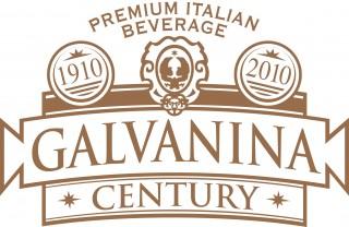 GALVANINA_logo_century-LG-320x208